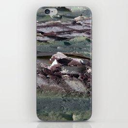 Landscape 3310C iPhone Skin