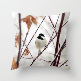 Chicka Chickadee Throw Pillow