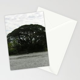 Majestic Beautiful Tree on the Mekong River Stationery Cards