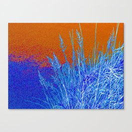 Blue Grass Red Canvas Print