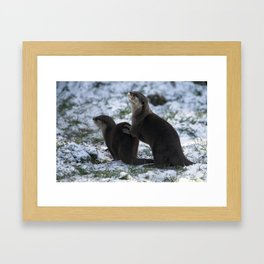 Otters In The Snow Framed Art Print