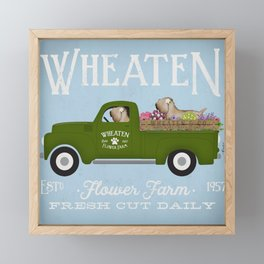 Wheaten dog wheatie flower vintage truck  Framed Mini Art Print