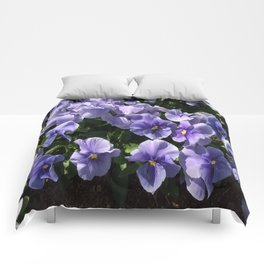 Viola Blue Floral Comforters