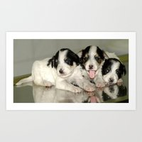 puppies Art Prints featuring Three Puppies by Premium