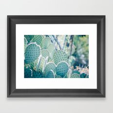 Paddle Cactus Framed Art Print