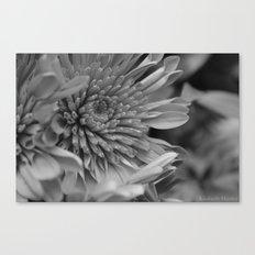 Blooming B&W Canvas Print