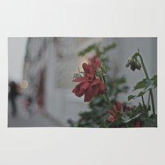 Rose de rouge Rug