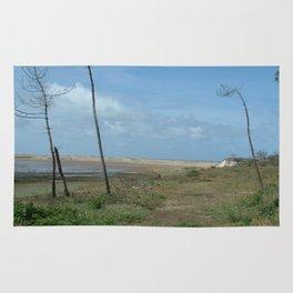 Near beach of Phare de la Coubre at te Atlantic Ocean Rug