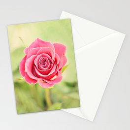 Pink Rose in Spring Stationery Cards