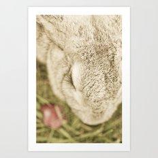 Bunny Lashes Art Print