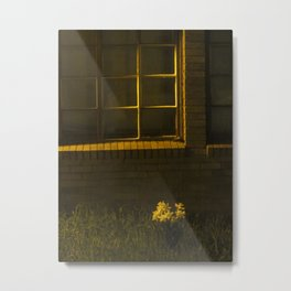 Nowhere Else To Go Metal Print