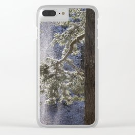 Shedding Snow Clear iPhone Case