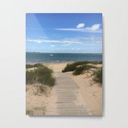 Breezy Seaside Path Metal Print