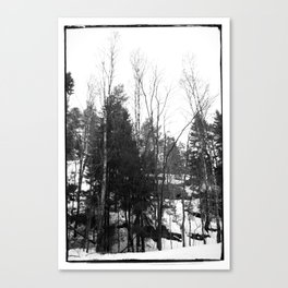 Norwegian forest VII Canvas Print