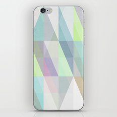 Nordic Combination 8X iPhone & iPod Skin