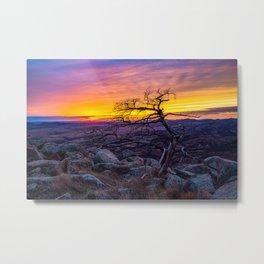 Mt. Scott - Scenic Sunset and Tree in Wichita Mountains of Oklahoma Metal Print