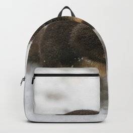 Winter Squirrel -  Cute Wildlife Animals Nature Photography Backpack