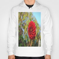 dahlia Hoodies featuring Dahlia by Renee Trudell