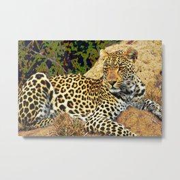 On Safari - The Leopard Rests Metal Print