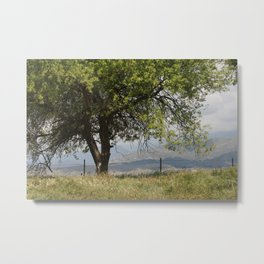 Stay A While  Metal Print