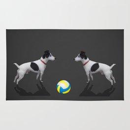 BALL! Rug