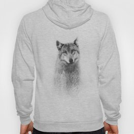 The Wolf and the Forest Hoody
