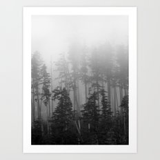 Foggy Forest, Chinook, Washington, Grey Photography Print Art Print