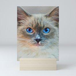 Siamese Cat-Blue Eyes Mini Art Print