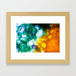 Ava Fielder - Student Artwork/Photography for YoungAtArt Fundraiser Framed Art Print