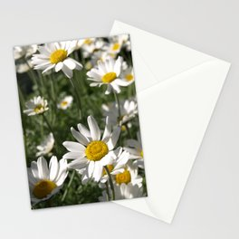 SUN WORSHIPPING DAISY FLOWERS Stationery Cards