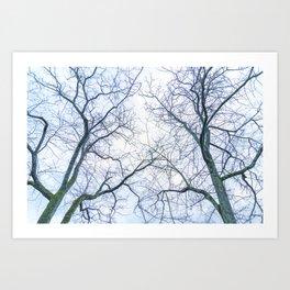 Abstract tree trunks Art Print