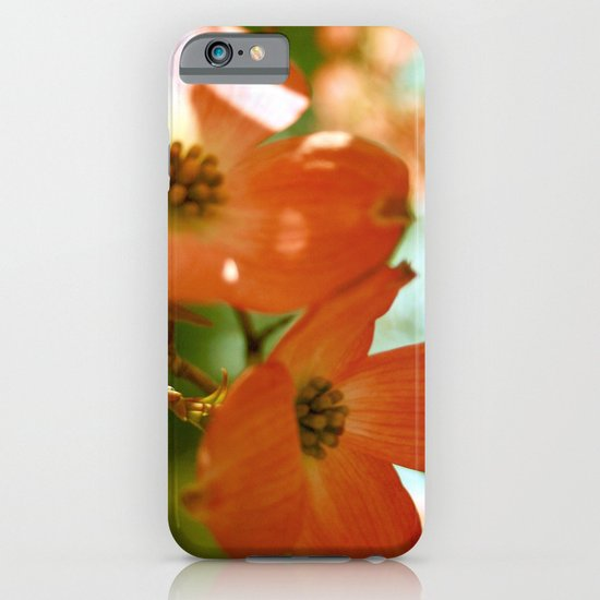 A Spring Day iPhone & iPod Case