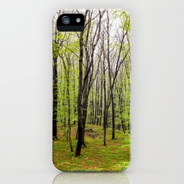 Spring green leafy deciduous forest iPhone Case