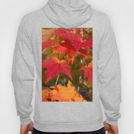 Fiery Autumn Maple Leaves 4966 Hoody