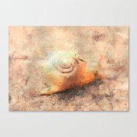 snail Canvas Prints featuring Snail by LoRo  Art & Pictures
