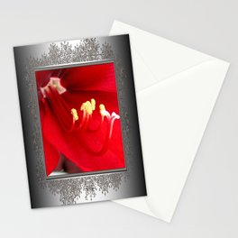 Amaryllis named Black Pearl Stationery Cards