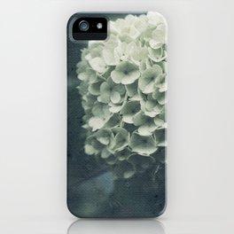Intricate iPhone Case