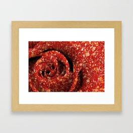 Vintage Lava Rose Framed Art Print