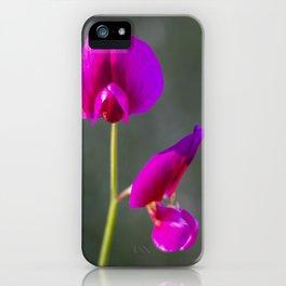 Hammond Trail In Bloom iPhone Case