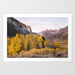 McGee Creek Fall Colors Art Print