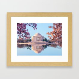 Cherry Blossoms at Jefferson Memorial in Washington DC Framed Art Print