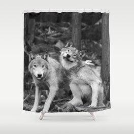 Fooling around wolfs Shower Curtain
