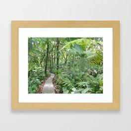 La Paloma Path Framed Art Print