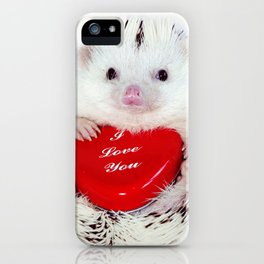 Hedgehog Valentine's Day card (request) iPhone Case