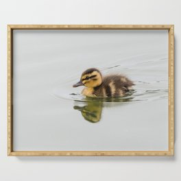 Duckling swimming Serving Tray