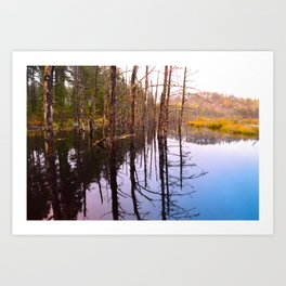 Rainy Autumn Morning by a Lake in the Boundary Waters Art Print