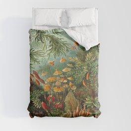 Ernst-haeckel-Kunstformen-der-Natur-viintage Comforters