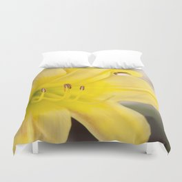 Yellow Blooming Canna Flower Nature Floral Fine Art Framed Lustre Wall Art Print  Duvet Cover
