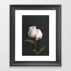 Broken Flower Framed Art Print
