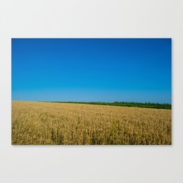 Inserting Lines Canvas Print